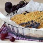 Sbriciolata gluten free con marmellata d'uva. Di mais, riso e briciole golose!