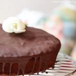 Torta zenzero, cranberries e cioccolato all'olio evo. Una torta col cuore.