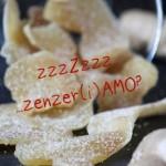 Attention s'il vous plaît … zenzer(i)AMO ?