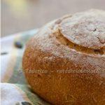 Pane al mais con semi di zucca e girasole. Scaldiamoci un po'!